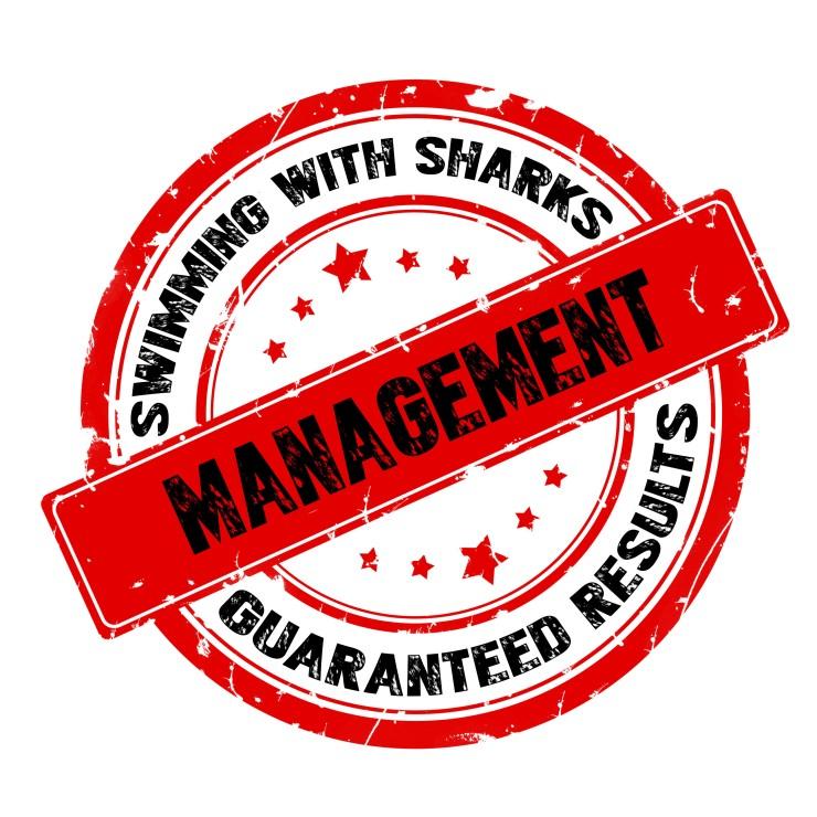 swsmanagement.jpg
